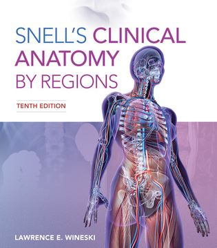 Snell's Clinical Anatomy 9th Edition Book PDF
